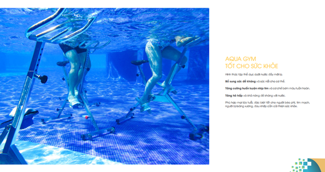 Dự án D Home Quận 6 - Aqua Gym