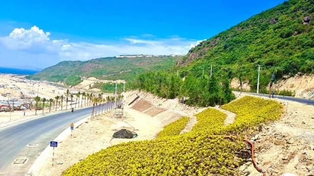 Tiến độ Hải Giang Merry Land - Dự án đang phủ xanh