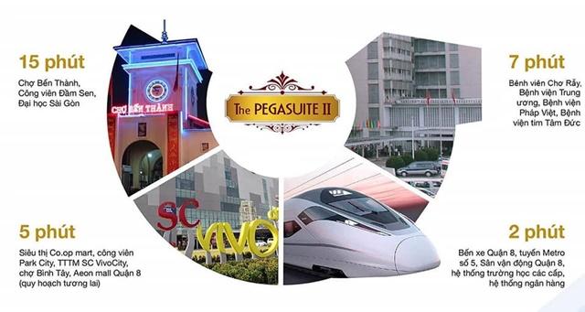 Tiện ích nội khu dự án Pegasuite 2 Quận 8